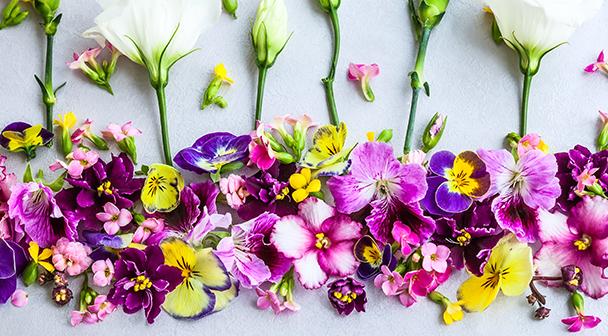 Flor cortada de Ecuador